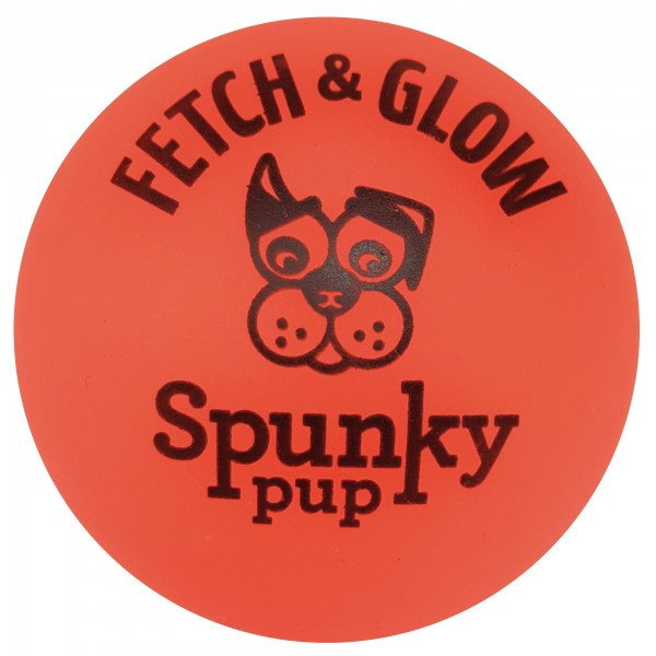 Fetch & Glow Ball